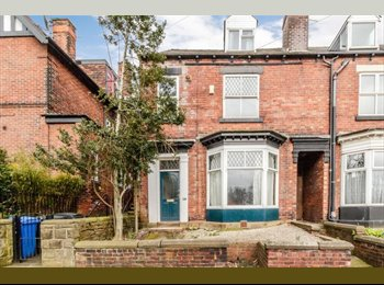 EasyRoommate UK - Professionals- Hunters Bar- Double Room, Nether Edge - £400 pcm