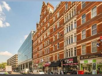 EasyRoommate UK - Great apartment on Gray's Inn Road, St Pancras - £900 pcm