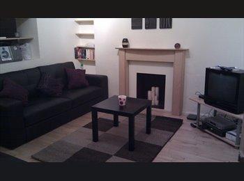 EasyRoommate UK - Room to Rent in Friendly House, Mount Pleasant, Swansea - £345 pcm