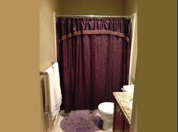 EasyRoommate US - Room 4 rent in Oak lawn, Oak Lawn - $800 pm