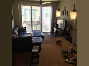 EasyRoommate US - subleasing 2 bed/ 2 bath, Northeast Dallas - $688 pm
