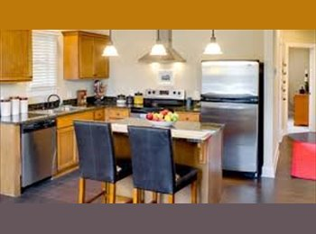 EasyRoommate US - The Cottages Lubbock takeover my lease , Lubbock - $535 pm