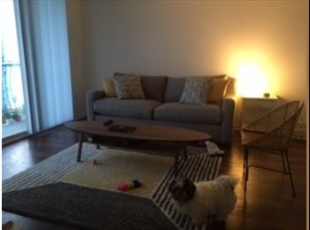 EasyRoommate US - Looking for a short term roommate, Edgewater - $1,200 pm