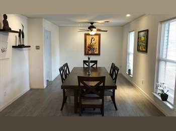 EasyRoommate US - Room for rent at Meyerland plaza, Willow Meadows/Willowbend Area - $775 pm
