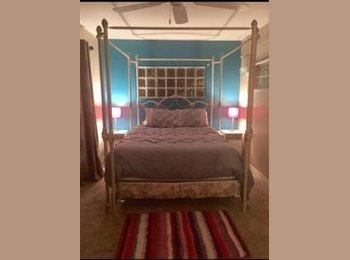 EasyRoommate US - Clearwater/palm harbor suite for rent., Saint Petersburg - $700 pm