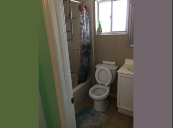 EasyRoommate US - Room for rent NOW UCFArea, Oak Ridge - $650 pm