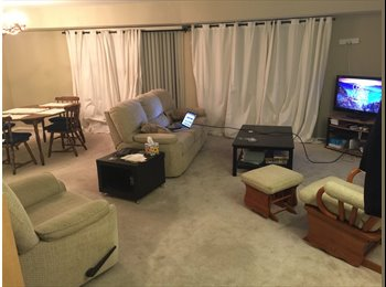EasyRoommate US - Master Room in Large Apartment on Sligo Creek Trail, Great View and Location!, Silver Spring - $900 pm