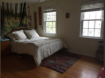 EasyRoommate US - Large Sunny room with walk in closet and private bath!, Arlington Forest - $1,200 pm