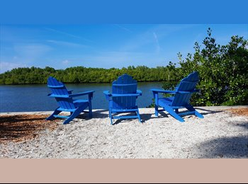 EasyRoommate US - Roommate to Rent Resort Style Tropical Oasis 6 months, Town 'n' Country - $1,000 pm