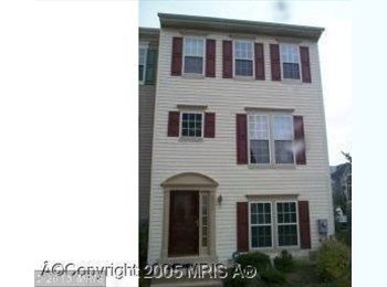 EasyRoommate US - Catch This Rabbit Why Don't You Lassie, South Laurel - $683 pm