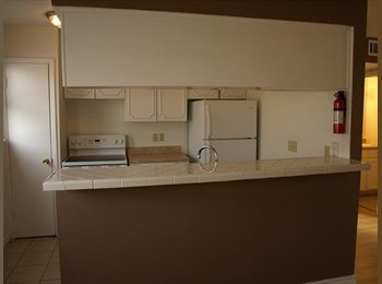 EasyRoommate US - Share a Gorgeous Two Bedroom Apartment with Male Student, South Main - $600 pm