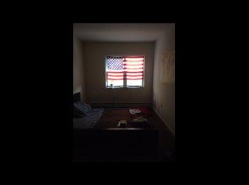 EasyRoommate US - Big romm in a beautiful Aparment , Bushwick - $850 pm