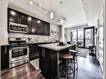 EasyRoommate US - Available En suite in West Loop 2 bed/ 2 bath, West Loop - $1,375 pm