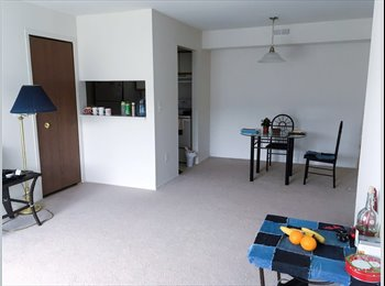 EasyRoommate US - Two bedroom and bathroom for short sublease, Charter Township of Clinton - $973 pm