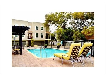 EasyRoommate US - 2 Bed/ 2.5 Bathroom FURNISHED South Tampa Rental, Tampa - $2,100 pm