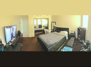 EasyRoommate US - Room for Male Housemate , University Park - $1,000 pm