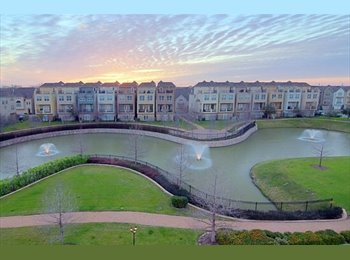 EasyRoommate US - Rooms for Rent in House in Texas Medical Center's Gated Community, South Main - $1,000 pm
