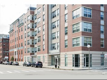 EasyRoommate US - Apartment in South End, South of Washington - $1,650 pm
