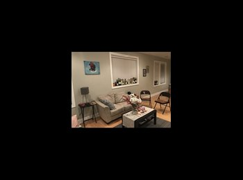 EasyRoommate US - Room in Clayton , Richmond Heights - $680 pm