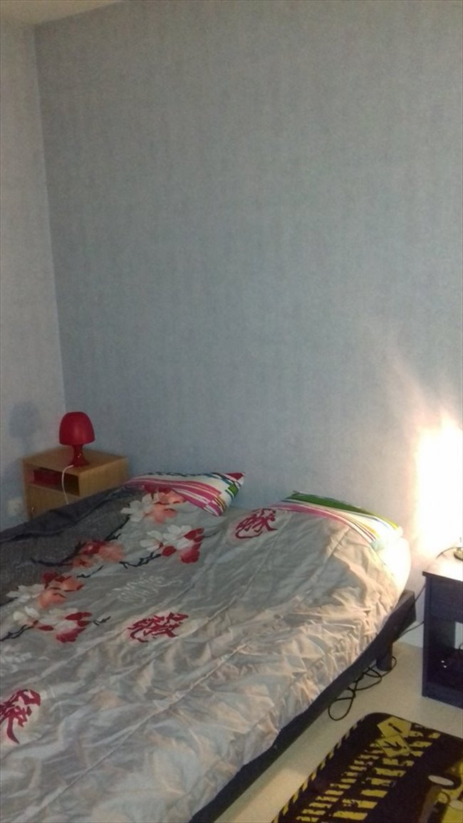 Colocation valdivienne chambre a louer appartager for 1 chambre a louer
