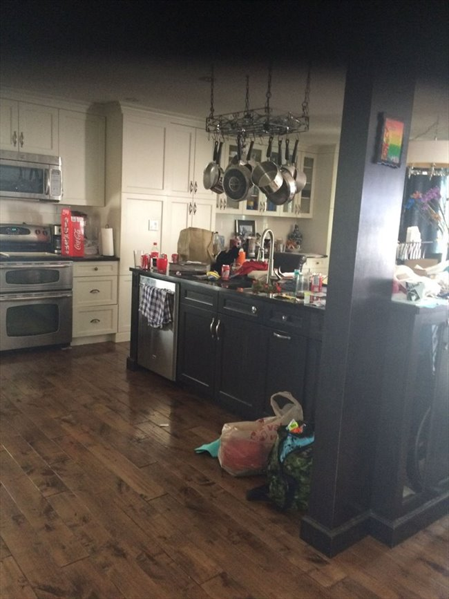 Room for rent in Edmonton - two, one bedrooms for rent in my ouse - Image 1