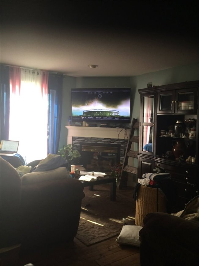 Room for rent in Edmonton - two, one bedrooms for rent in my ouse - Image 3