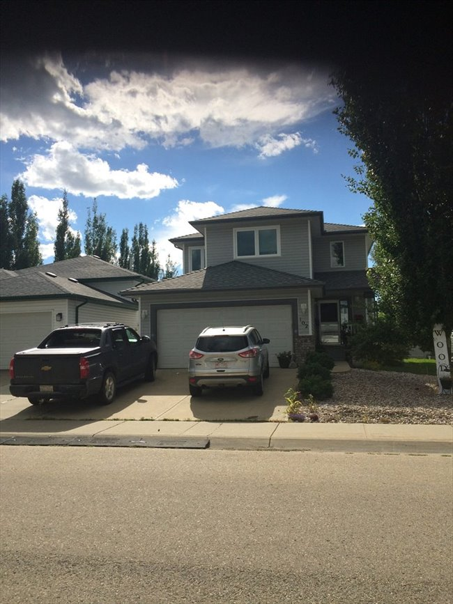 Room for rent in Edmonton - two, one bedrooms for rent in my ouse - Image 4