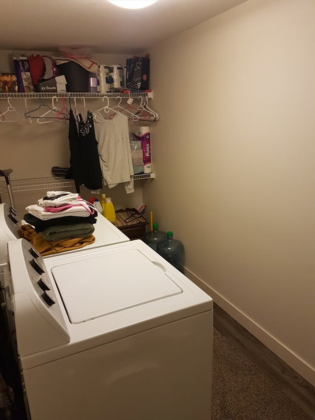 Room for rent in Edmonton - Roommate Needed For April  - Image 3