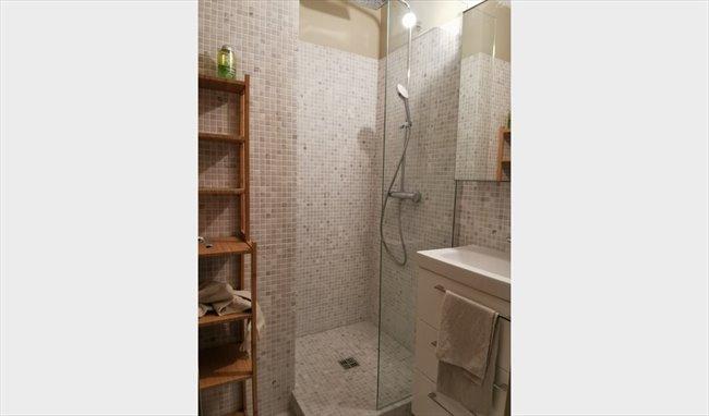 Colocation à Paris - Ile De France - Grand appartement à Beaubourg (the place to be) !! | Appartager - Image 4
