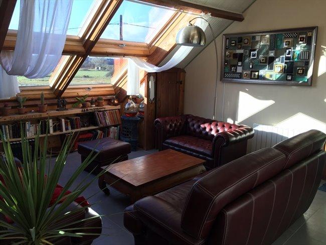 Colocation à Veigné - Superbe Loft T5 dans grande maison avec piscine | Appartager - Image 2