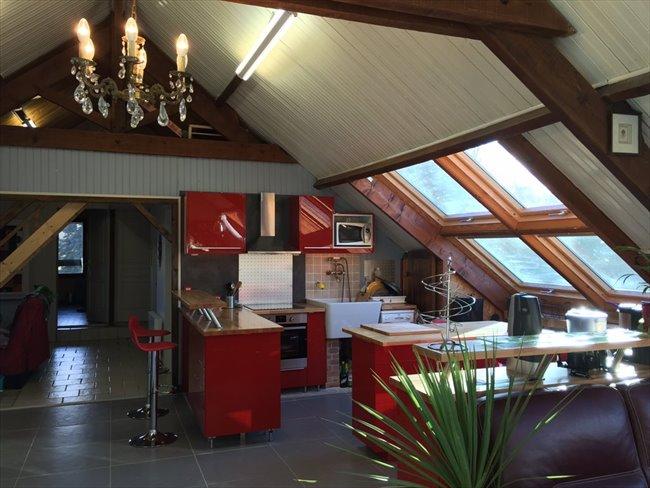 Colocation à Veigné - Superbe Loft T5 dans grande maison avec piscine | Appartager - Image 3