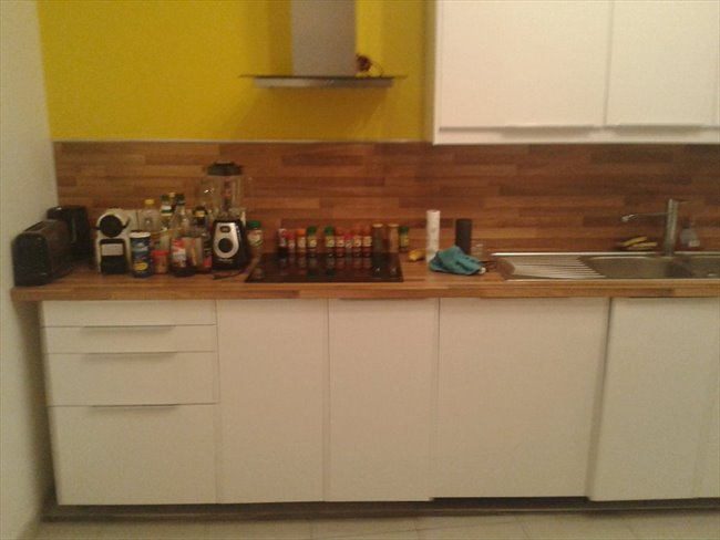 Colocation à Lyon - International roomate in a cozy apartment | Appartager - Image 3