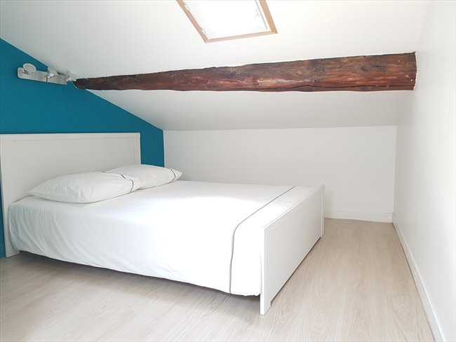 Colocation à Lyon - International roomate in a cozy apartment | Appartager - Image 4