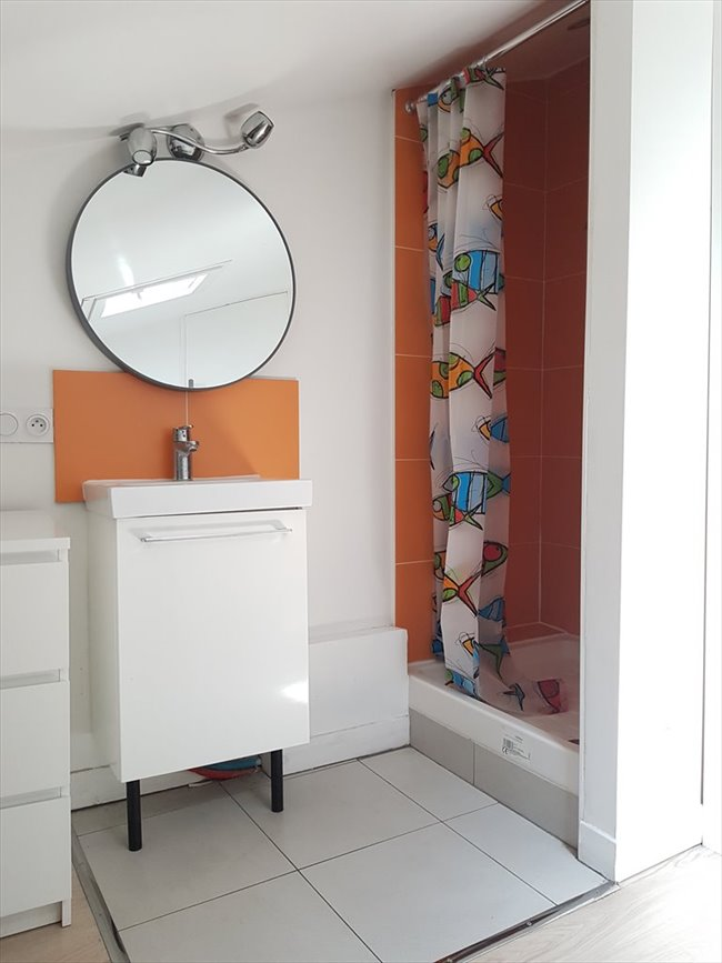Colocation à Lyon - International roomate in a cozy apartment | Appartager - Image 5