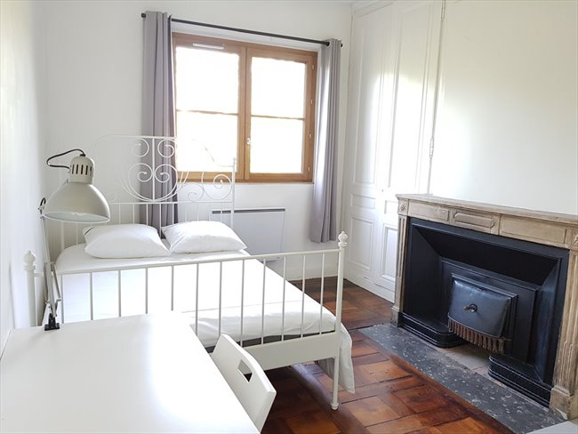 Colocation à Lyon - International roomate in a cozy apartment | Appartager - Image 6