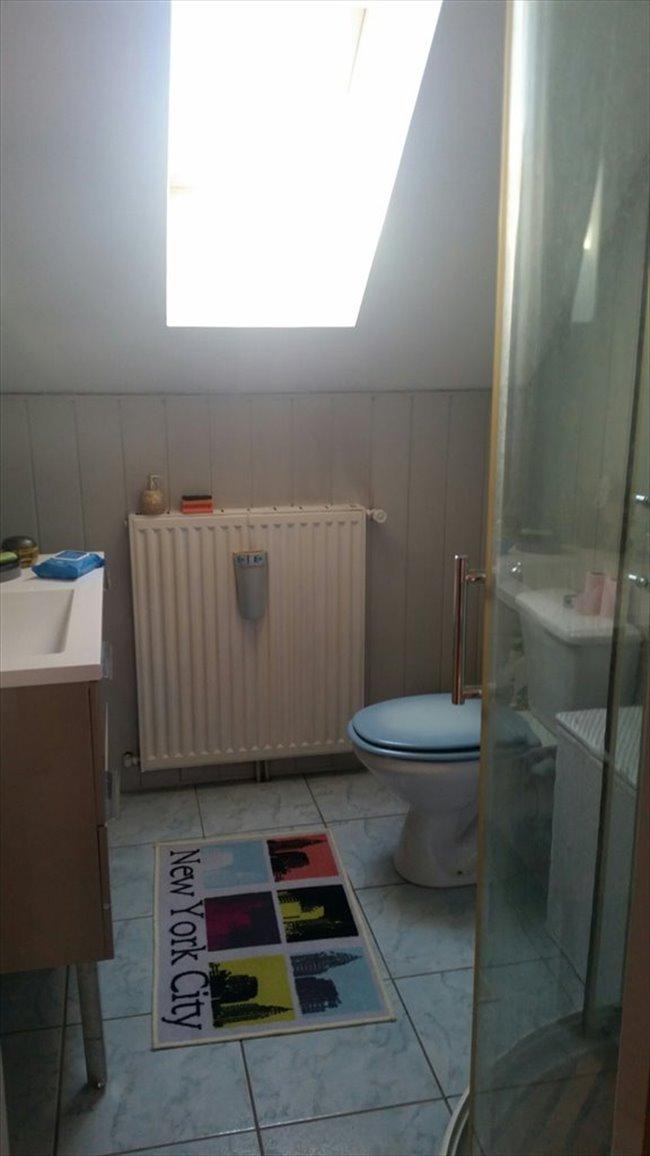 Colocation franois loue chambre meublee et douche dans - Charges deductibles location meublee ...