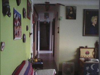 CompartoDepto AR - Se alquila habitación para estudiante, Mar del Plata - AR$ 3.500 pm