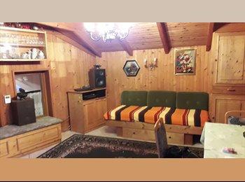 EasyWG AT - Biete Zimmer in Haus mit Garten in einem ruhigen Dorf nahe Wien, Austria - 400 € pm