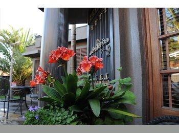 EasyRoommate AU - Luxury fully renovated dream home in Bentleigh, Hampton - $220 pw