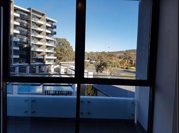 EasyRoommate AU - Woden new trilogy apartment , Kingston - $250 pw