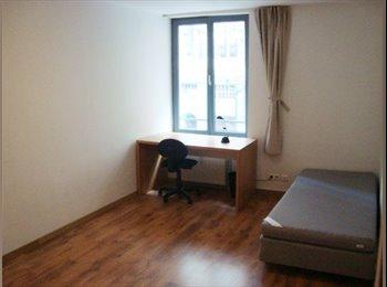 Appartager BE - ch.3.2. - Aout ou Septembre - au Centre (Rue Antoine Dansaert ), Bruxelles - 575 € pm
