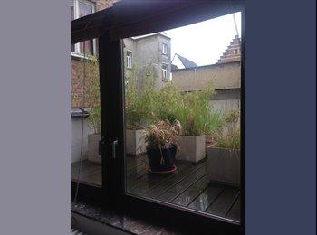 Appartager BE - grand appartement avec 60 m2 de terrasse plein sud, Bruxelles - 1.650 € pm