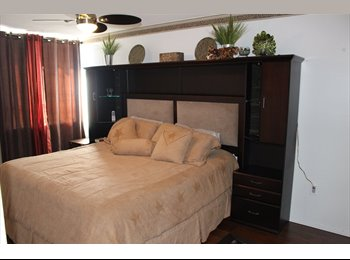 EasyRoommate CA - Rooms for Rent Close to Centennial College and U of T, Toronto - $650 pcm