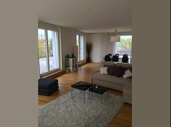 EasyWG CH - WG-Zimmer mit Terrass in Modern Wohnung in ZH-City, Zürich - 1600 CHF / Mois