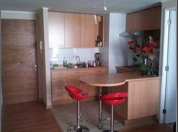 CompartoDepto CL - Bellas Artes, habitacion amoblada con baño privado, Santiago Centro - CH$ 210.000 por mes