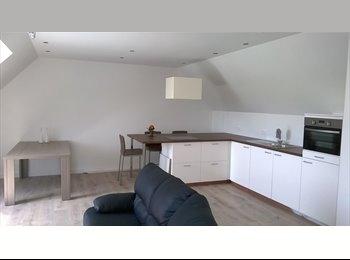 EasyKot EK - Gezellig samenhuizen in nieuwbouw, Mechelen-Malines - € 350 p.m.