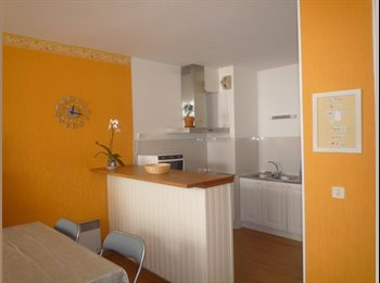 Appartager FR - CHAMBRE MEUBLEE - Bel appartement rénové neuf, Bayonne - 455 € /Mois