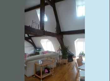 Appartager FR - chambre spacieuse à st paul, 3ème Arrondissement - 800 € /Mois
