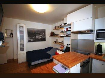 Appartager FR - Grand, beau Studio près Tour Eiffel, OECD, UNESCO, 15ème Arrondissement - 850 € /Mois