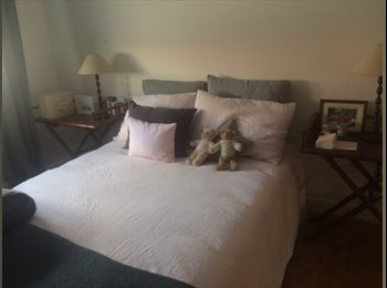 Appartager FR - Room for an international candidate - nice flat in the 6th disctrict, Lyon - 585 € /Mois